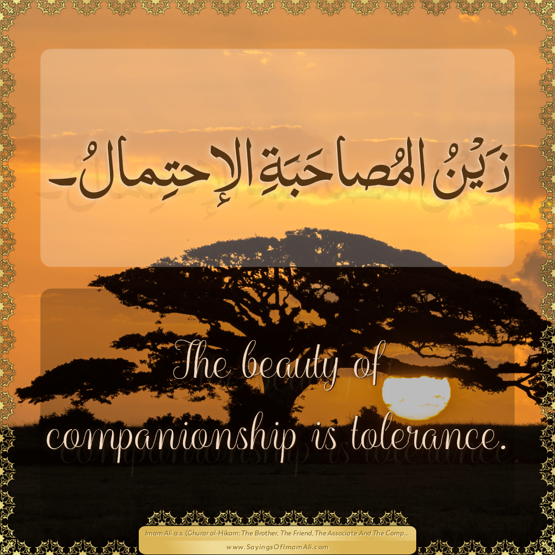 The beauty of companionship is tolerance.