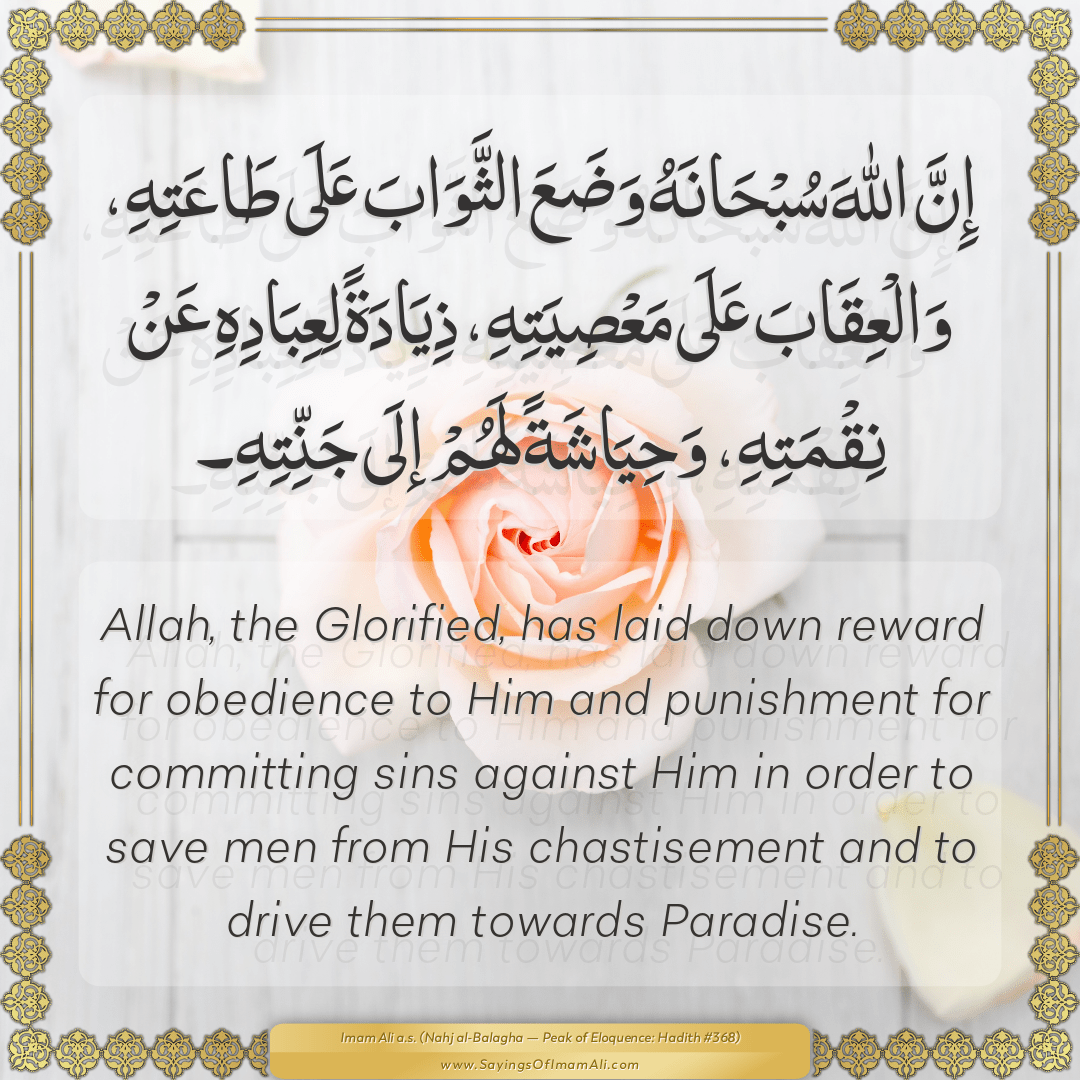 Allah, the Glorified, has laid down reward for obedience to Him and...