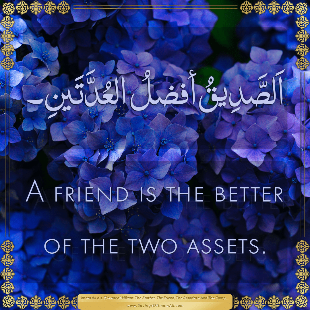 A friend is the better of the two assets.