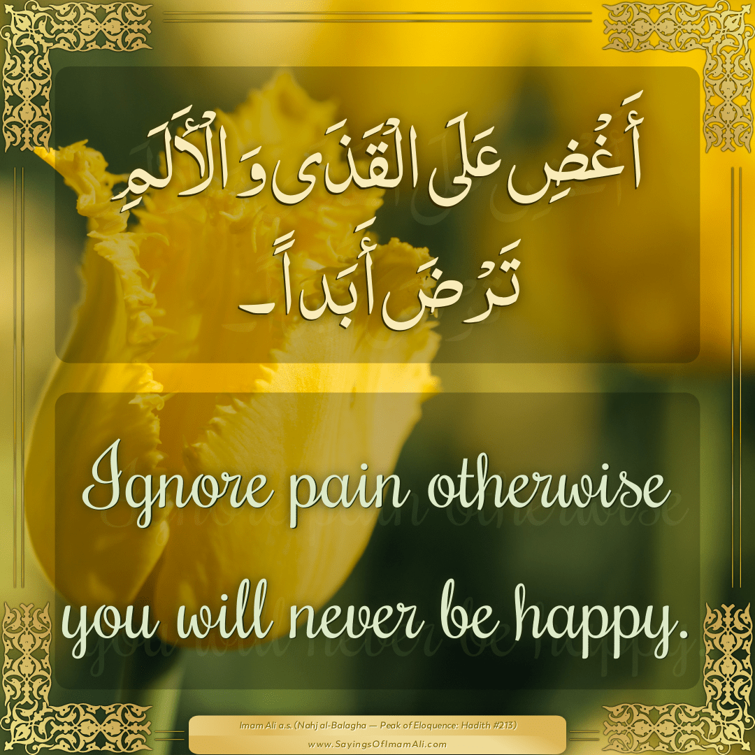 Ignore pain otherwise you will never be happy.