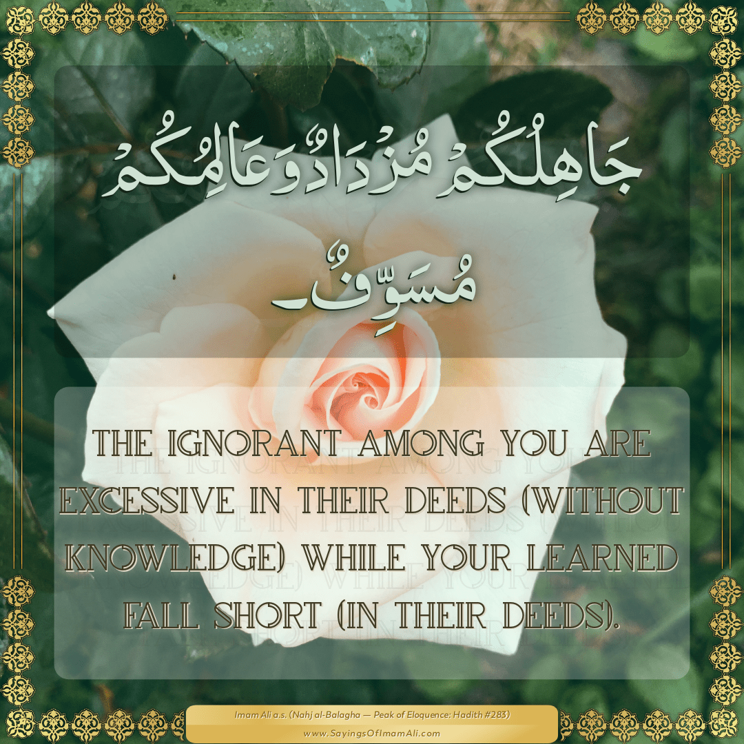 The ignorant among you are excessive in their deeds (without knowledge)...